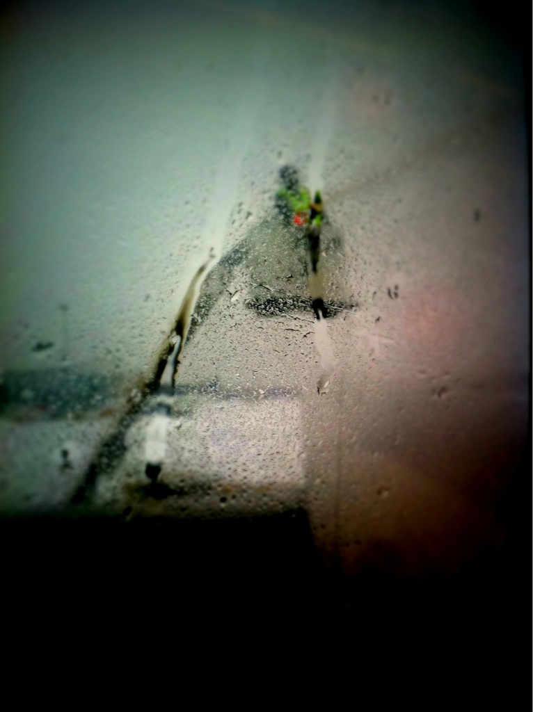 iPhone-Capture.jpg